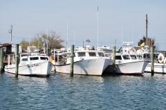 boats_0547